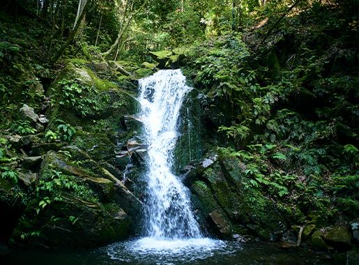 Hiking: Takisaka-no-Michi Path of Samurai Training