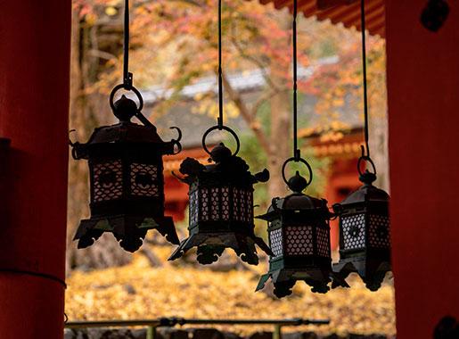 Special Shrine Visit: Morning Visit to Kasuga Taisha Shrine and Nara Park